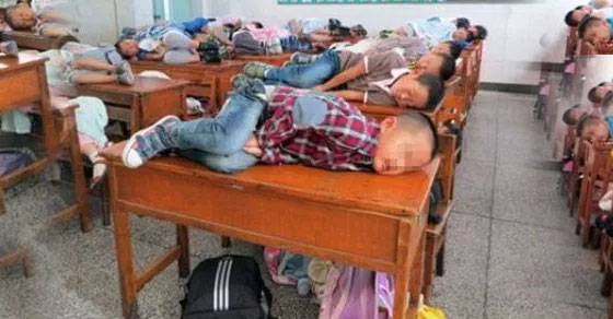 sekolah,sd,cina,kelas,pelajar,tidur siang