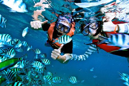 snorkling,snorkeling,karimun jawa