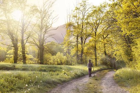landscape,sabar,tenang,belajar