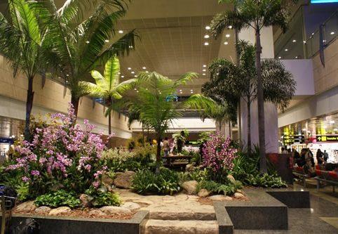 Changi Airport 8