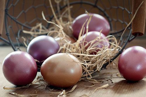 telur,makanan,nutrisi