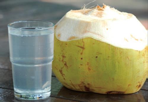 air kelapa,degan,kelapa muda