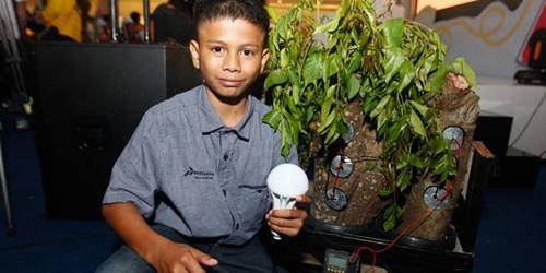 Naufal Rizki,bocah aceh,pohon kedondong