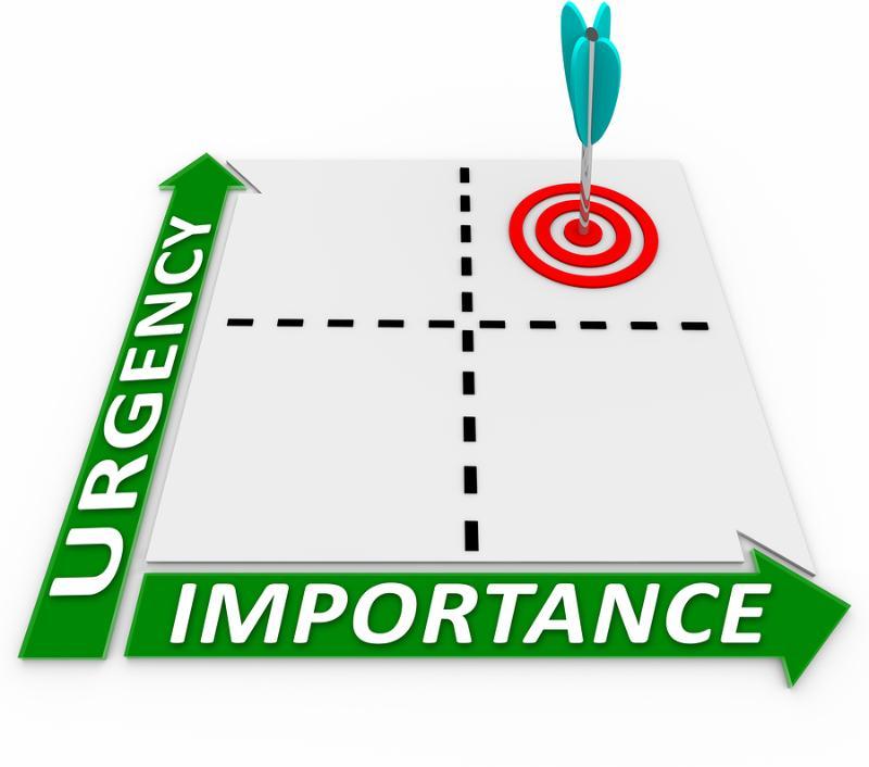 2. Orang Sibuk dan Orang Produktif Beda Prioritas