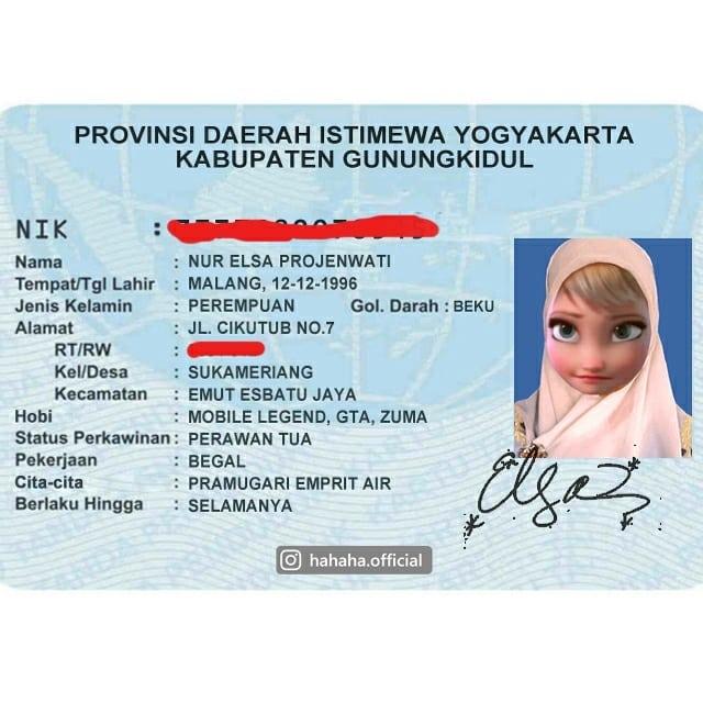 Elsa ikut jadi korban edit KTP ala Indonesia