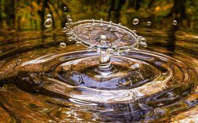 Membaca kepribadian seseorang dari tahun kelahiran : Elemen Air